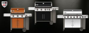 Barbecue Weber Gas GS4
